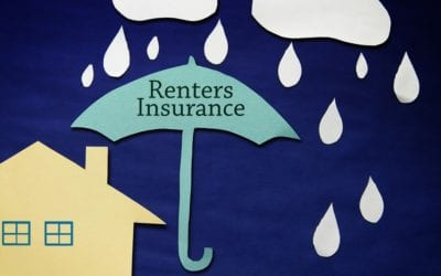 Do You Really Need Renters Insurance? Your Landlord is Not a Safety Net