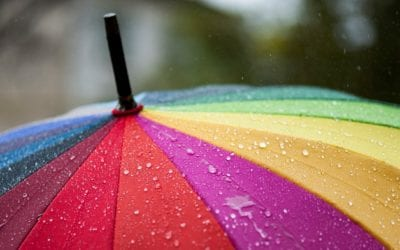 Umbrella Insurance Helps You Weather Legal Storms