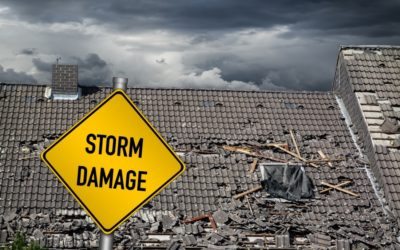 Insuring Your Home and Health Against the Worst of New York's Weather